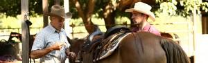 Saddle Up Horse