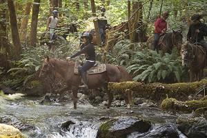 ranch dudes riding horses