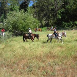 guest ranch horseback trail riding