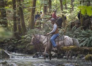 horse riding vacation